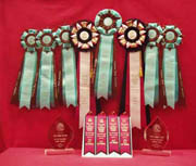 Tonkinese Awards